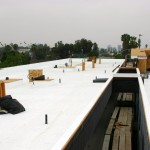 TPO Single Ply System